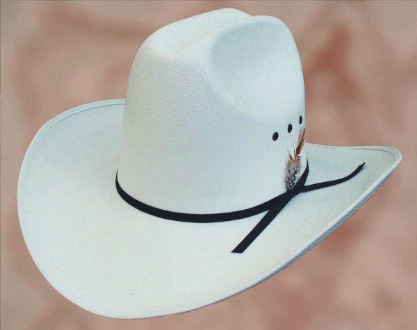 Hat Rodeo