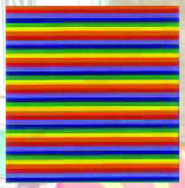 Bandana Rainbow (G)