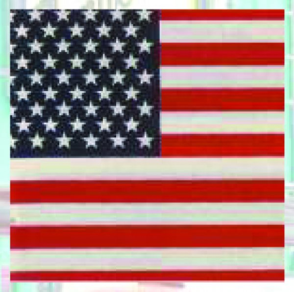 Bandana USA (G)