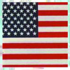 Bandana / Tuch USA 642 (G)