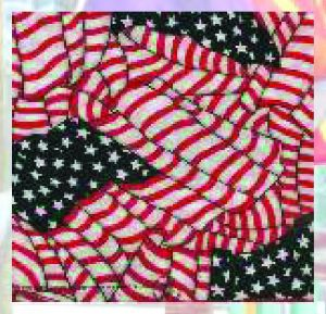 Bandana / Tuch USA Flag 643 (G)